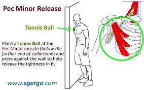 tennisballstretch.jpg