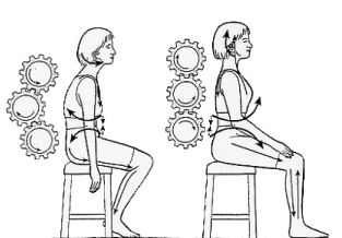 Postural forces seated.jpg