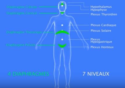 roger-fiammetti-respiration-totale-animation-youtube
