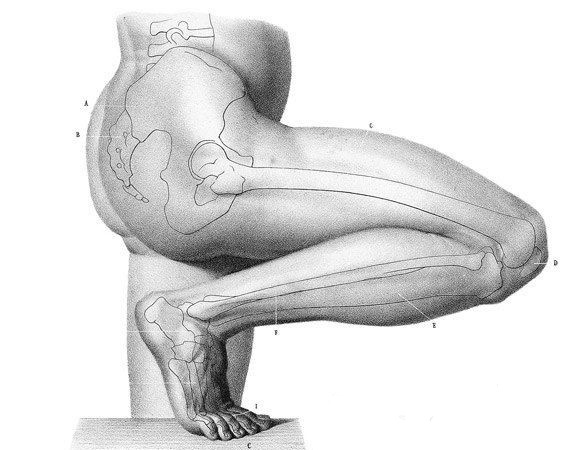 balance poses (please) bend your damn knee \u2013 mindful mvmnt Medical Diagram of Knee balance poses (please) bend your damn knee